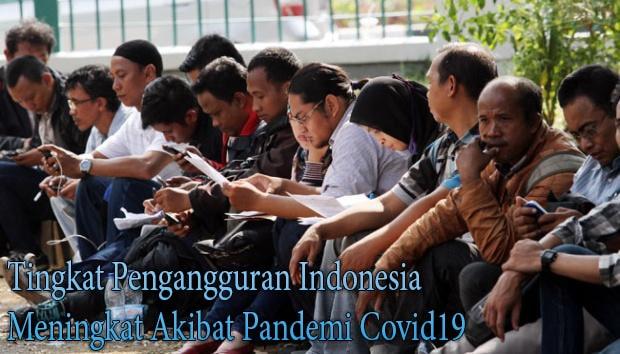 Tingkat Pengangguran Indonesia Meningkat Akibat Pandemi